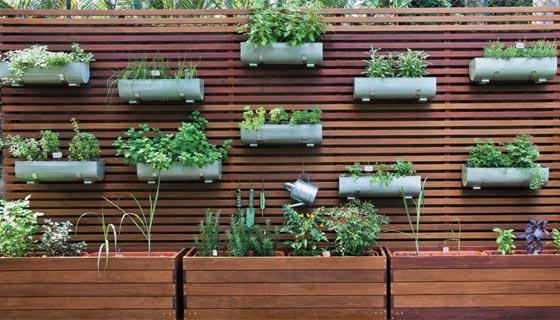 ideias jardins grandes : ideias jardins grandes:Hortas em casa – Cultivando, Cuidando, Embelezando