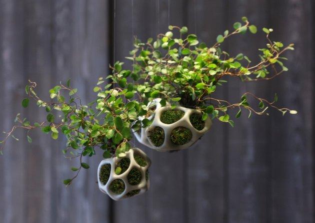 Vaso decorativo Cella